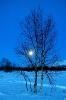 зимняя луна